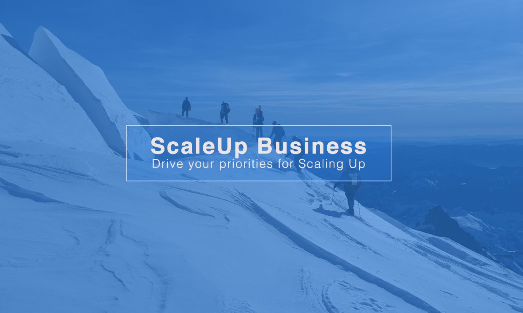 ScaleUp Business